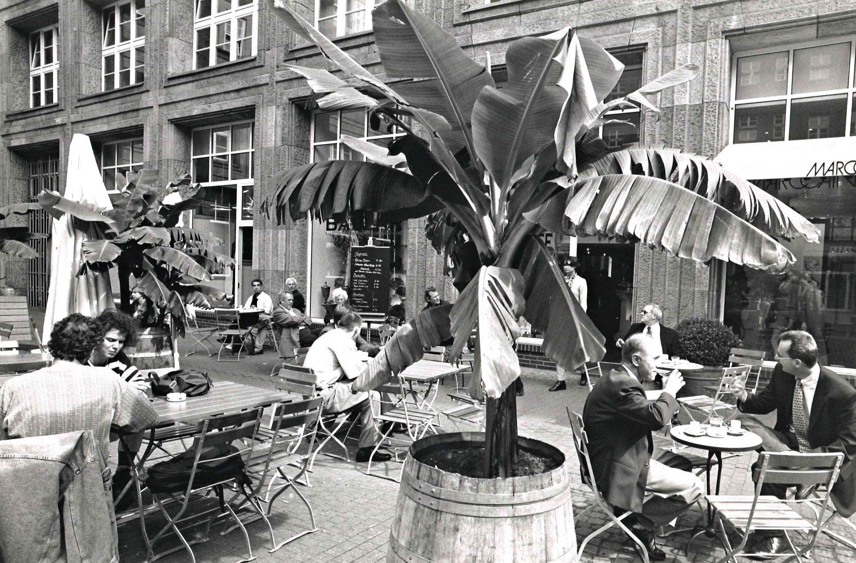 Bazzar Caffè Historie 1997